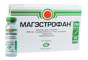magestrofan-foto