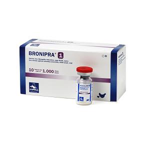 bonipra-1-foto