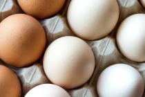 Челябинское УФАС России проверит поставщиков куриных яиц