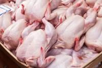 Ограничение на импорт в Казахстан продукции птицеводства российских фабрик продлено