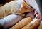 Группа «Агро-Белогорье» по итогам полугодия нарастила производство свинины на четверть