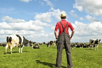 Немецкие фермеры призывают снять экономические санкции с РФ