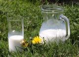Ситуация на рынке молока и молокопродуктов на 19 марта 2021 года