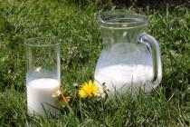 Ситуация на рынке молока и молокопродуктов  с 17 по 21 августа 2020 года