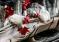 На Нюрбинской птицефабрике обрушились клетки с 45 тысячами кур