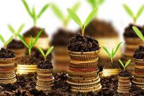 В 2018 году бюджетное финансирование АПК Курганской области составит 814,6 млн руб.