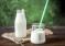 О ситуации на рынке молока и молокопродуктов с 29 мая по 4 июня 2018 года