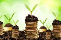 Сельхозорганизации и фермеры Челябинской области получат 40 млн рублей в виде субсидии