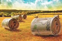 Начинающие фермеры пермского края получат господдержку от 1,5 до 3 млн.  рублей