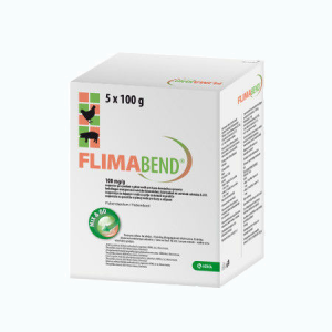 flimaband-foto
