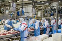 АПХ «Мираторг» произвел более 99 тыс. тонн свинины в живом весе в 1 квартале 2018 года