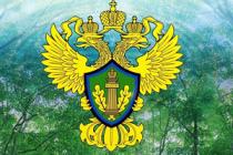 Росприроднадзор отсудил у Нижнетагильской птицефабрики 22 млн рублей за ущерб почве