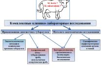 Диагностические исследования  при антропозоонозных инфекциях  (на примере туберкулеза крупного рогатого скота)