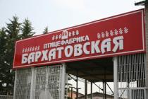 Бархатовская птицефабрика в Красноярске может стать банкротом