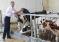 10 кировских фермеров защитили свои бизнес-проекты