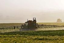 Итоги сельхозпереписи будут учтены для подъема челябинского АПК