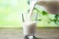 Ситуация на рынке молока и молокопродуктов с 13 по 17 июля 2020 года
