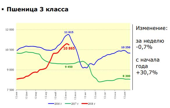 pshenica-1-2589