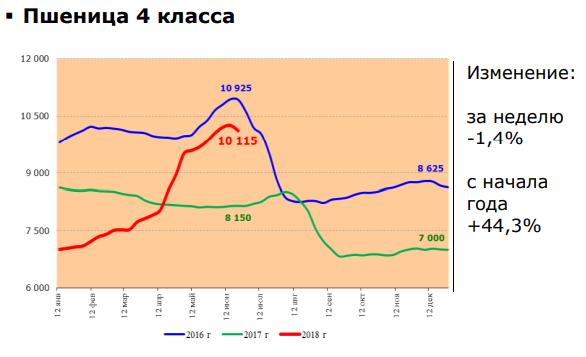 pshenica-2-2589