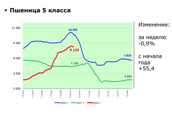 pshenica-3-2589