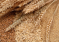 Ситуация на рынке зерна с 30 сентября по 4 октября 2019 года
