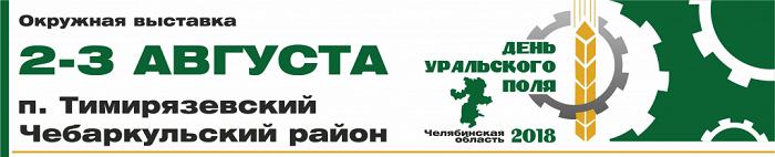 den-polya-2018-chelyabinsk-banner