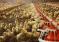 Минсельхоз России: производство птицы за январь – август 2018 года увеличилось на 1,8%