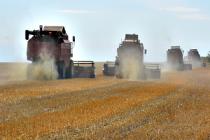 Челябинская область стала лидером по количеству собранного зерна в УрФО