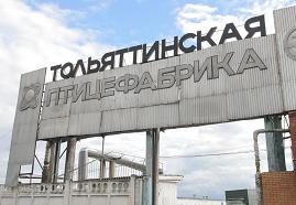 pticefabrika-toliyattinskaya