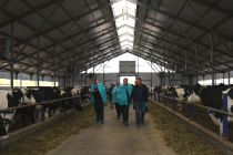 Датчане ознакомились с работой современных башкирских ферм