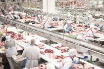 «Мираторг» увеличил объем производства высококачественной говядины за 9 месяцев 2018 года на 35% – до 77 тысяч тонн