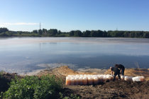 «Сибирская Аграрная Группа» стала применять препарат, устраняющий запах животных отходов