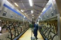 31 мая Минсельхоз Челябинской области проведет заседание круглого стола «Реализация проектов цифровой трансформации в сельском хозяйстве»