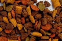 Сравнительный анализ аминокислотного состава некоторых кормов и добавок