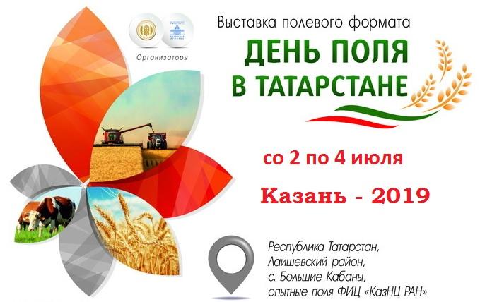 den-polya-tatarstan-2019-banner