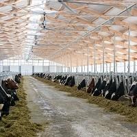«Дамате» приступила к строительству третьей очереди молочного комплекса в Тюмени