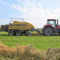 С 21 октября Минсельхоз Челябинской области принимает документа на субсидии по транспортным затратам