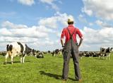 Минсельхоз Пермского края принимает документы на субсидирование по программе «Развитие семейных животноводческих ферм»