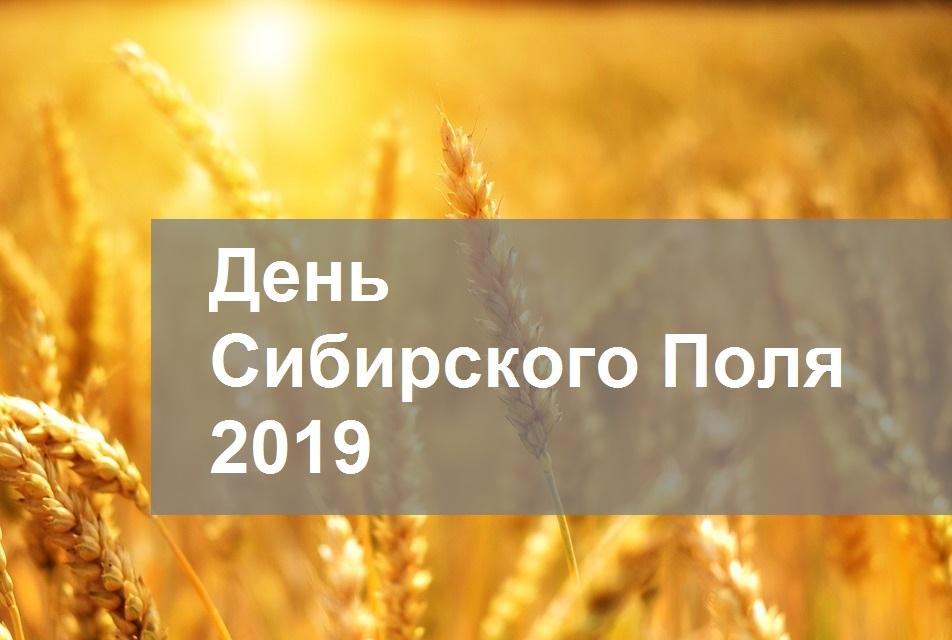 день сибирского поля 2019