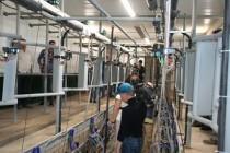 Новая молочная ферма на 212 голов открылась в Алнашском районе Удмуртии