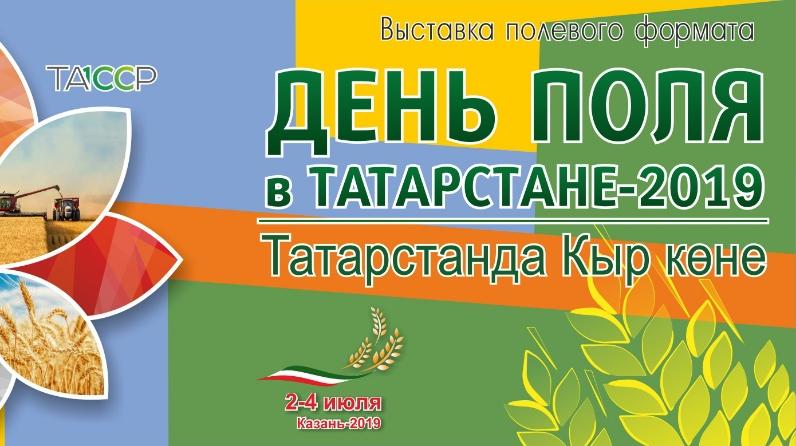 den-polya-v-tatarstane-2019-456