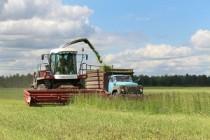Аграрии Республики Башкортостан убрали 70% всех площадей, намолотив 2,3 млн тонн зерна