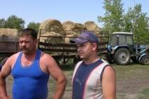 26 сельских предпринимателей подали документы на гранты «Агростартап» в Челябинской области