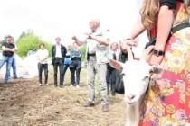 В Удмуртии благодаря программе «Агростартап» в этом году будут открыты 37 новых фермерских хозяйств