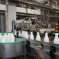 Удмуртию посетят эксперты и специалисты молочной отрасли из более чем 15 регионов России