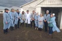 Сельскохозяйственные предприятия Пермского края предлагают работу на селе