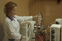 Вологодская ГМХА готовит промышленные испытания кормовой добавки для телят, альтернативной антибиотикам