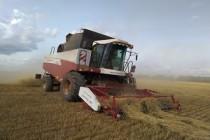 Тревожные прогнозы на полевой сезон в Башкирии, возможна засуха