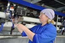 СХПК «Колос» Вавожского района Удмуртии переходит на круглосуточное производство молока