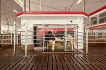 В Башкортостане открывают первую очередь новой роботизированной фермы
